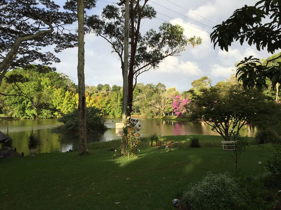 Beautiful lake on property, access to guests.