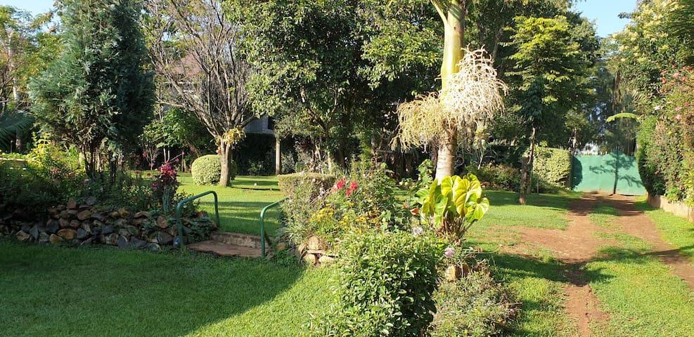 Almond Gardens