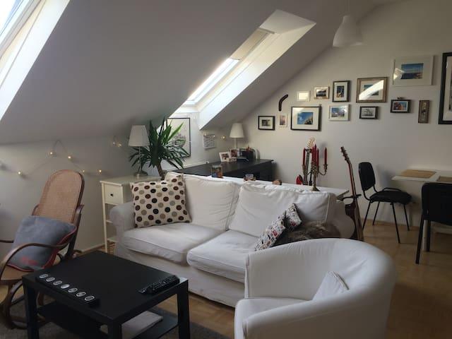 central top floor flat - Graz - Appartement