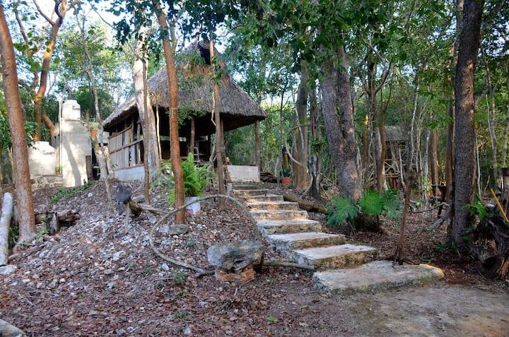 Área de camping y de contacto con la naturaleza