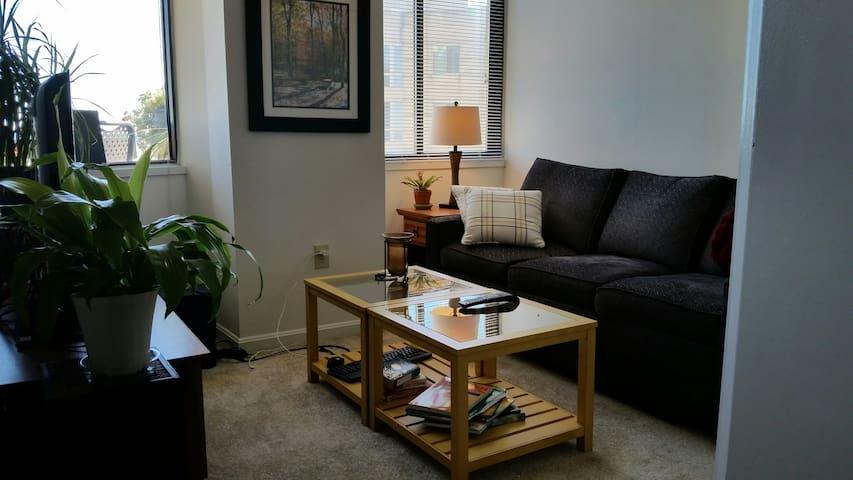 Luxury Apt close to DC via Metro - Arlington - Apartment
