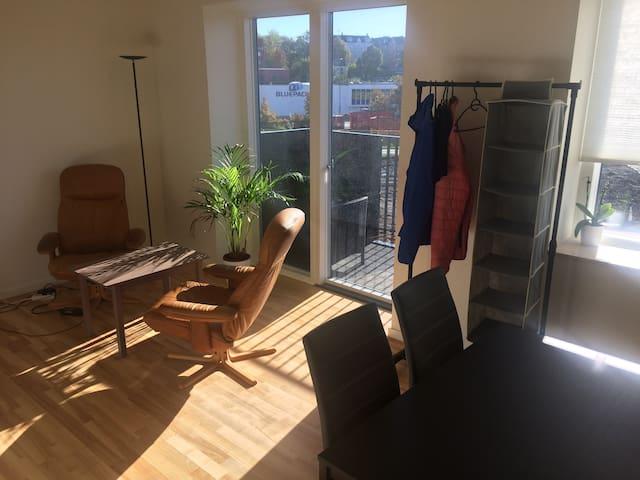 Shared new apartment in Odense harbor