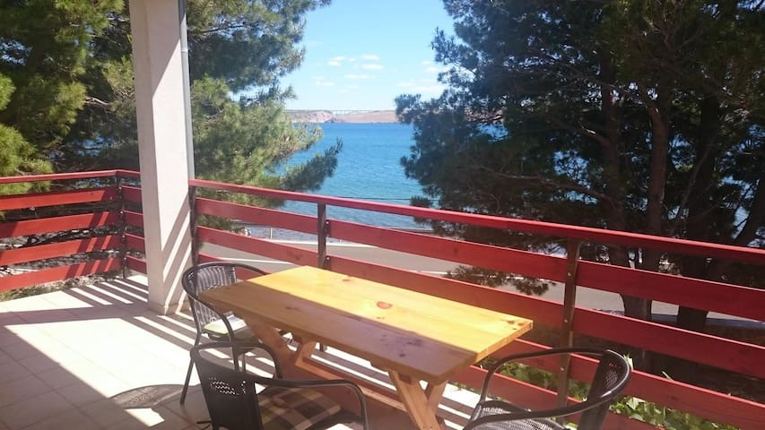 One bedroom apartment near beach Seline, Paklenica (A-11197-b)