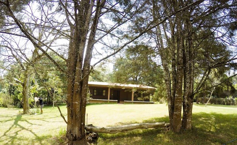Linda cabañita para grupos grandes o chicos!!! - Guatemala - Lodge immerso nella natura