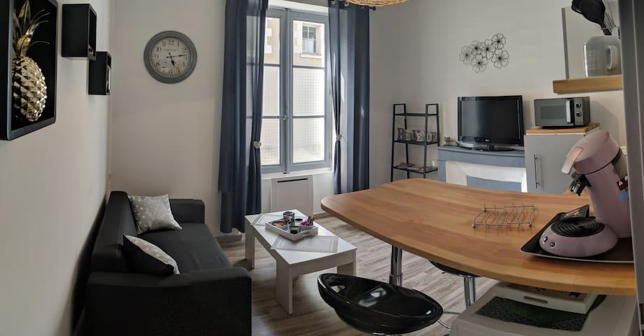 Appartement terrasse au  centre de Blois 2