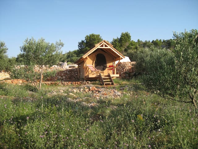 Glamping hut in olive grove with sea views
