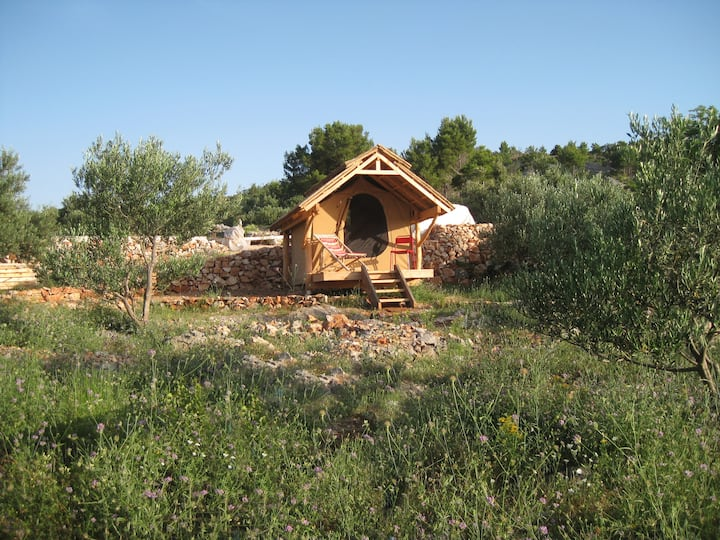 "Glamping hut ""Perun"" in olive grove with sea views"