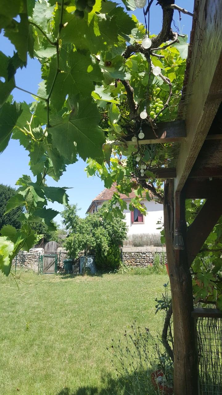 Beautiful home near Montmorillon. Entire house.