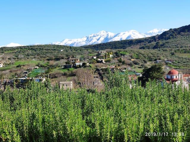 Griekenland, Kreta, Green Farm-Little Paradise
