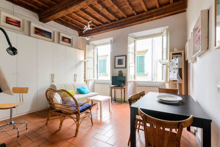 Studio near to Pitti Palace
