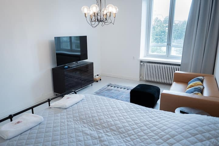 Newly renovated 2 bedroom apartment Pyynikintori