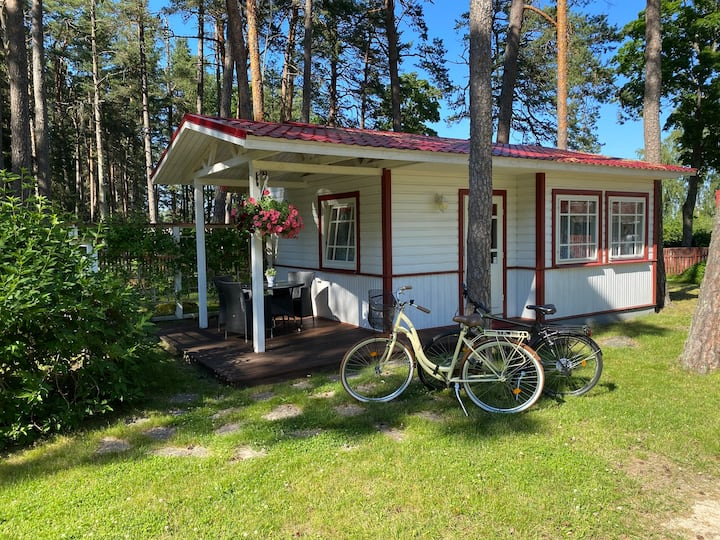 Sinisalu guesthouse