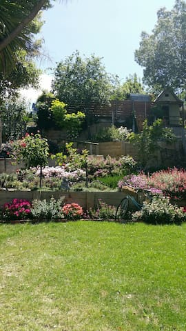 Part of the back garden.