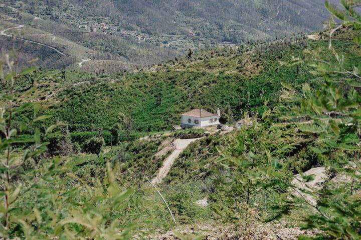 Quinta da Abicoca