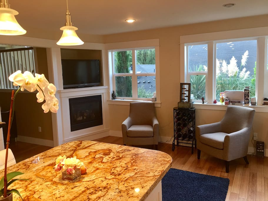 Sitting area with TV and Fireplace as part of the kitchen