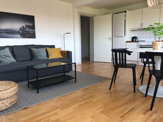 Apartment for 4 in suburb to Copenhagen, h70,2,26