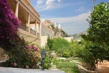 Une partie du jardin, au loin les maisons perchées de Moulay idrisse zerhoun.