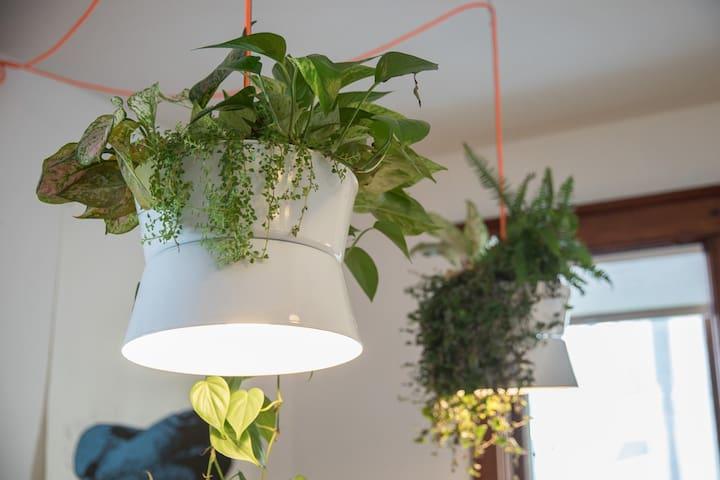 Custom planter lights everywhere!