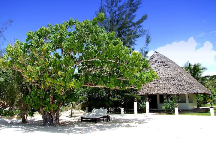 The Direct Beach Bungalow - Galu 723