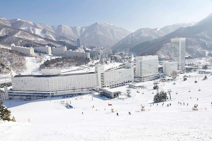 苗場 Naeba Ski Resort  * fuji rock * (8+ guests) o4