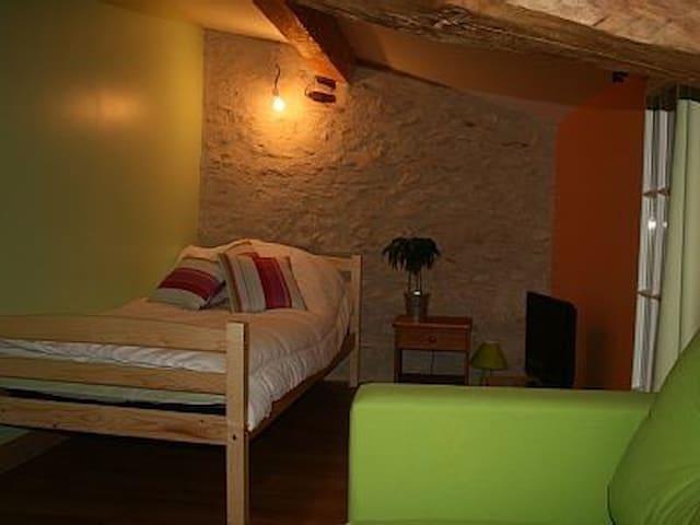 Chambre avec Spa, sauna, piscine - Teyssode - House