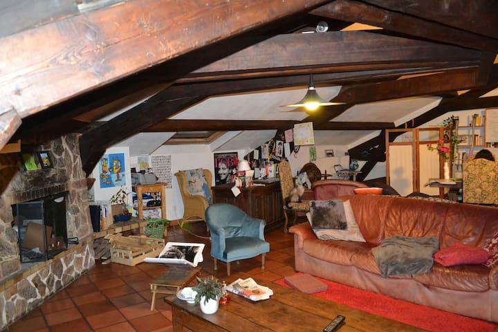 1 lit 1pl. + canapé dans un salon - Nancy - Appartement