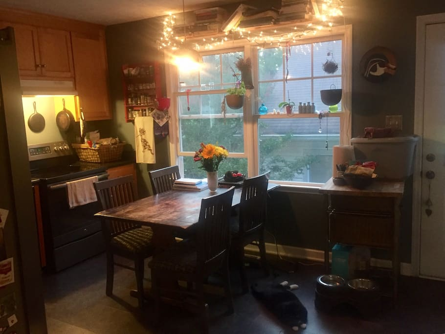The lively hub of our home, the kitchen