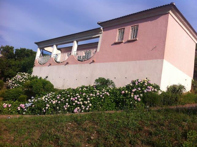 villa sur parc arbore