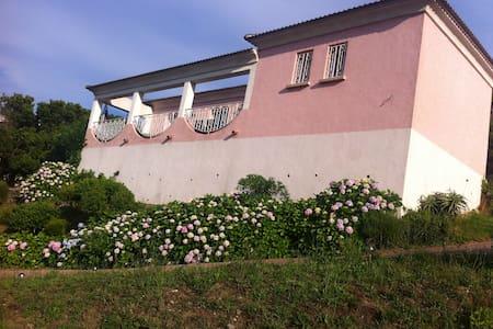 villa sur parc arbore - Sisco