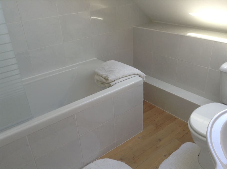 Upstairs bathroom with shower over bath.
