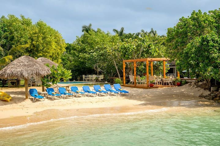 BEACHFRONT VILLA, FULLY STAFFED! PRIVATE POOL! Coral Cove-Discovery Bay 3BR