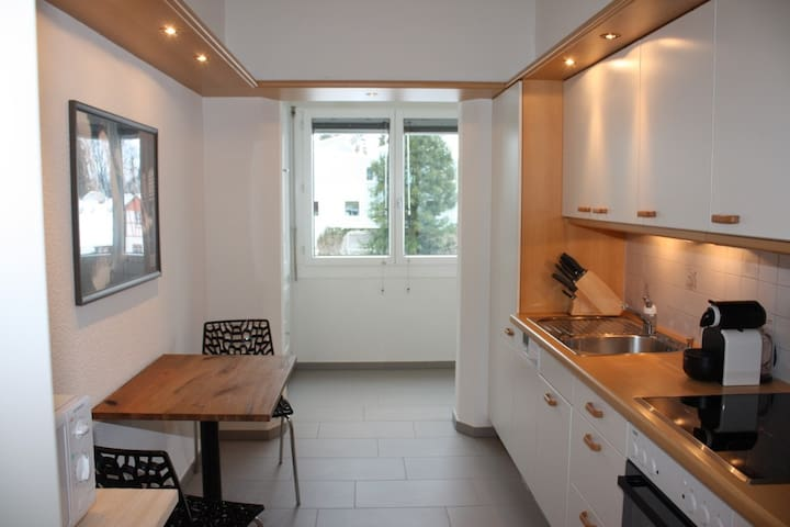 Executive 1BR flat, city center (Hammer 2) - Zürich