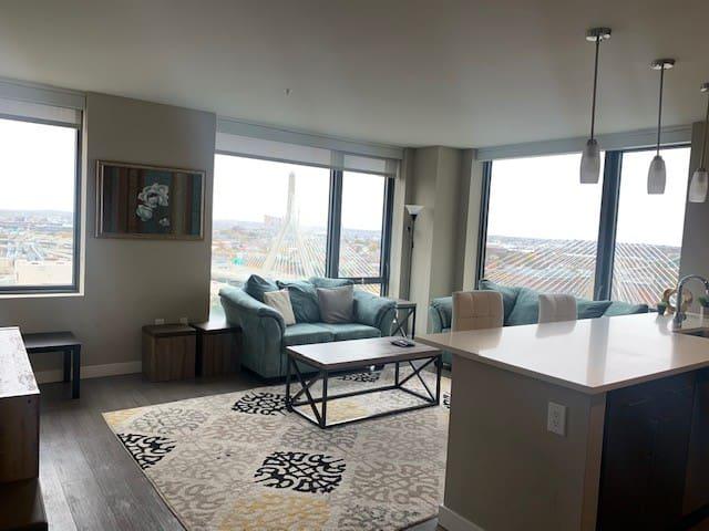 Luxury Boston Apartment MGH