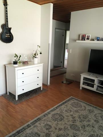 Olohuone/ the living room