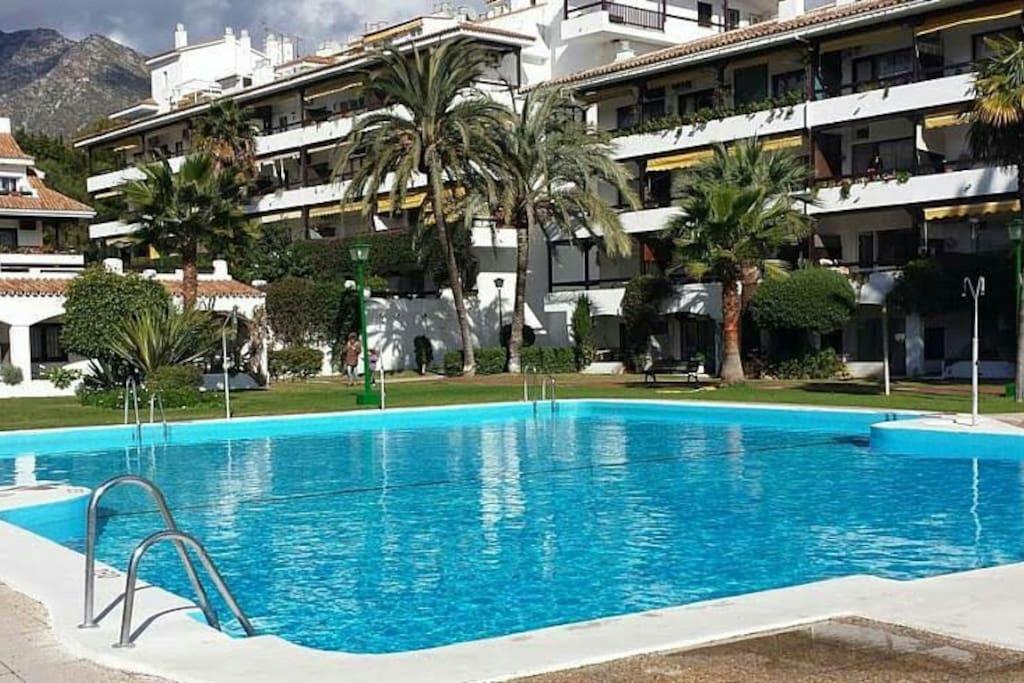 Nuevo a metros de la playa piscina milla de oro lofts for Piscina 50 metros sevilla