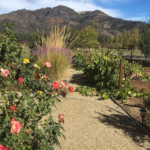 Enjoy the gardens of Sonoma Rosso in the heart of Sonoma Valley wine country - beautiful in all seasons!