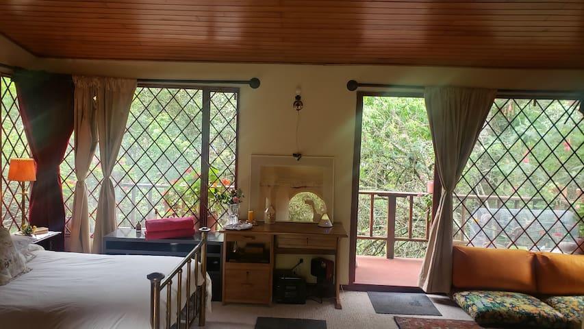 Esta es la habitación que como lo ves en la foto tiene una cama doble ,  la salida al balcon y a tu lado derecho hay una salita con chimenea y un sofacama.