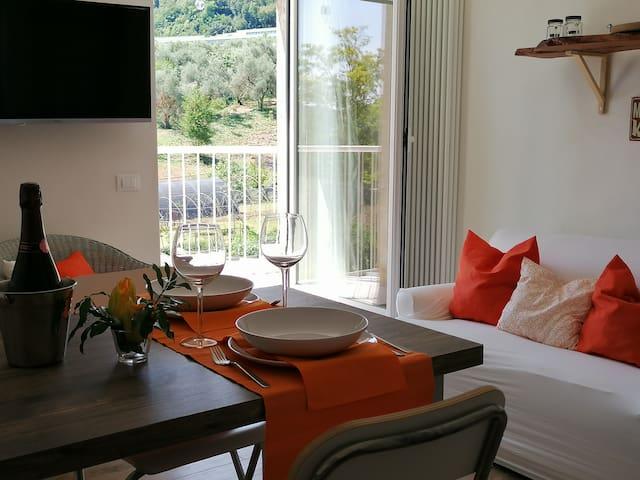 Charming Apartment in Salo - Lake Garda