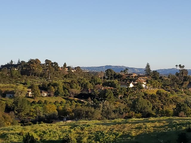View from the Casita bedroom full of rolling hills lined with citrus and avocado groves.