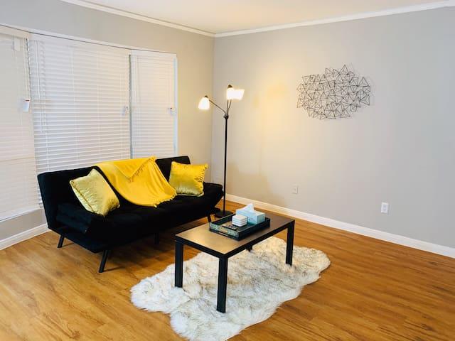 Bright Home   Galleria & Uptown + Free Amenities