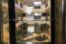 Building is design with atrium for air to free flow....
