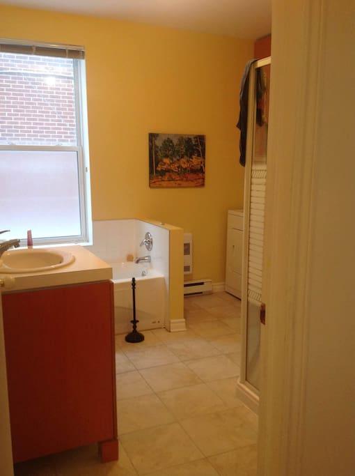 Salle de bain, douche, lave linge et sèche linge