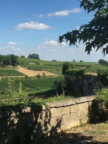 House - heart of Saint Emilion with amazing view - Saint-Émilion - Hus