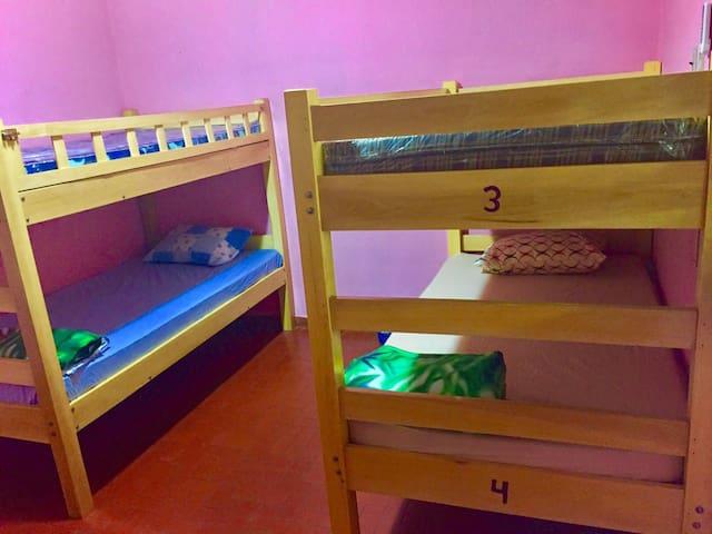 Maui Waui International Hostel, Habitación 4 camas