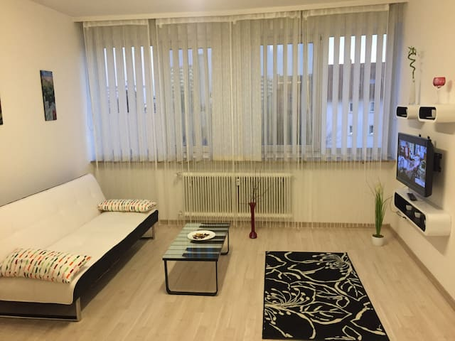 Apartment+WiFi near centrum/Erlangen - Erlangen - Appartement