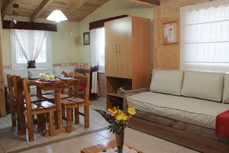 PORTAL DE LA ESTEPA Cabaña - Dina Huapi - Natur-Lodge