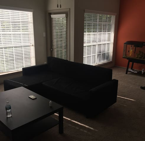 Spacious 1 bdrm in Perfect location - Houston - Apartemen