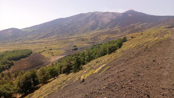 Landscape of Northern Etna