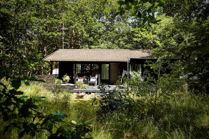 Modern Sunny Cabin in a small Forrest