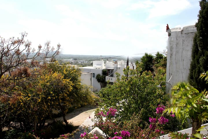 Naxos Apartments near the City - Angidia / Naxos - Apartment